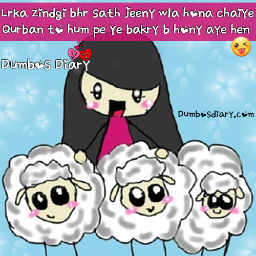 Eid ul Adha funny quotes, SMS, poetry in Urdu/Hindi