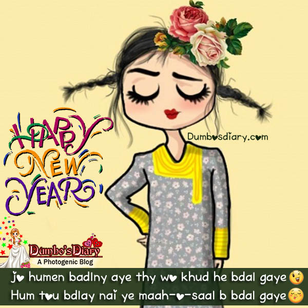 funny lady new year 2017